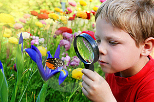 niño explorando