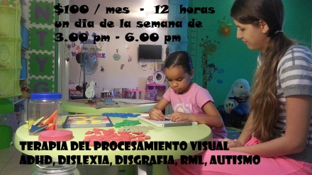 terapia percepcion visual