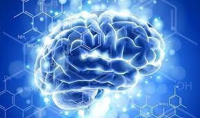 la neurometria y el metodo de clinica neurometrics